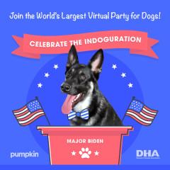Celebrate The Indoguration!
