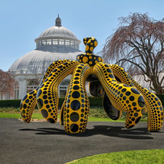 Your First Look At 'KUSAMA: Cosmic Nature' At The New York Botanical Garden
