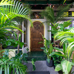 Take A Walk On The Wild Side At Nolita's 'Jungle Summer' Pop-Up