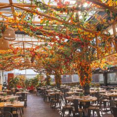 11 Actually Fun Things To Do This October In NYC