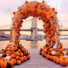 The Best Spots To Snap The Ultimate Autumn Instagram In NYC