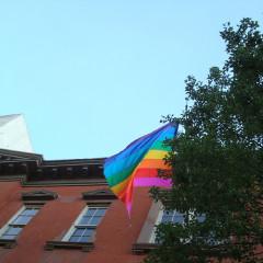 LGBT: Screening Of Anyone And Everyone
