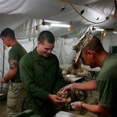 Debate Rages Over Porchetta's Gift Of Pork Sandwiches To US Troops In Afghanistan