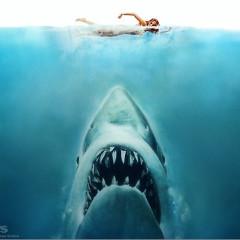 Did Shark Week Start Early In The Hamptons?