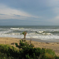 Pucker Up For A Big, Wet Montauk Makeout!