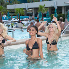 Dar Be Dar Swimwear At The Miss Universe Pageant