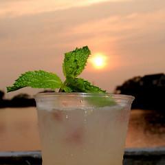 Hamptons Classics: The Cocktail List