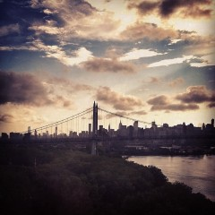 Photo Of The Day: View From The Bridge
