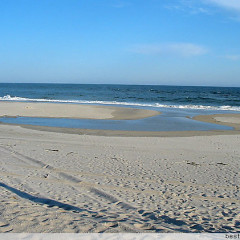 NY Area Beaches To Check Out Before The Summer Ends