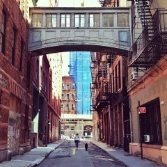 Photo Of The Day: Early Morning Walks In The City
