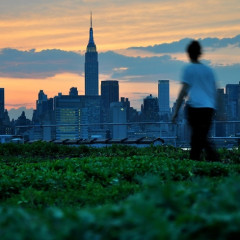 Guide To Greenpoint: Top Reasons To Visit Brooklyn