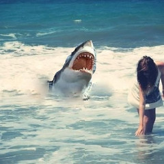 Eavesdropping In: Video Of Venice Beach Great White Shark Attack Yesterday; Christina Aguilera Smells Like Hot Dogs; Lakers To Acquire Dwight Howard; Joe Simpson Busted For DUI; Taylor Swift & New BF Are Getting Serious