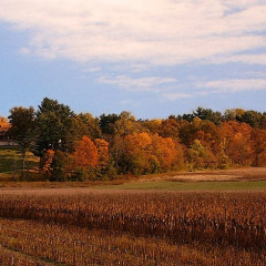 The Only Hudson Valley Guide You'll Need This Fall