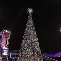 L.A. LIVE Rings In The Season At The 5th Annual Holiday Tree Lighting