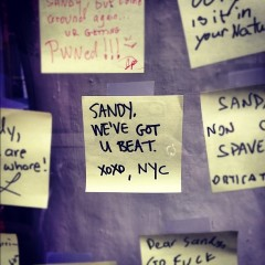 Photo Of The Day: Sandy, We've Got You Beat