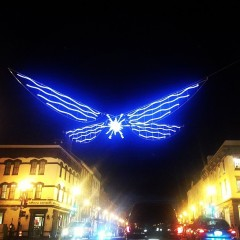 Photo Of The Day: Georgetown's Holiday Lights