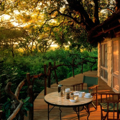 6 Unique Hotels To Get In Touch With Your Wild Side