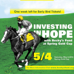 Join Us At The Becky's Fund Tent At The Virginia Gold Cup!