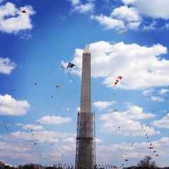 Photo Of The Day: Kites On The Mall