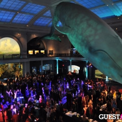 Inside The American Museum Of Natural History's 2013 Museum Dance Sponsored By Roberto Cavalli