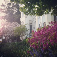 Photo Of The Day: Georgetown In The Springtime