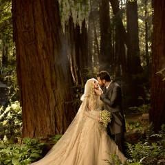 Sean Parker & Alexandra Lenas Tie The Knot, Seven Kingdoms Style