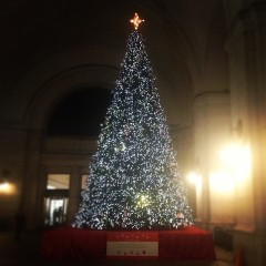 Instagrams Of The Day: DC Is Decorated For Christmas!
