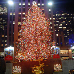 10 NYC Activities To Get You In The Holiday Spirit