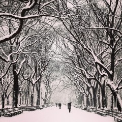 Instagram Round Up: Snowy Scenes From Winter Storm #Hercules