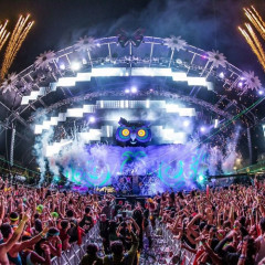 EDC NYC: The Best Moments From Electric Daisy Carnival 2014