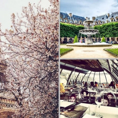 Paris City Guide: Where To Eat, Drink & Shop During Couture Week