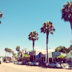 Venice Beach Guide: 6 Things To Do & See
