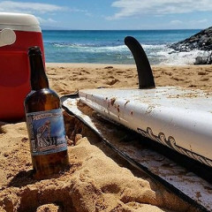 The Top 10 Summertime Brews To Sneak On The Beach