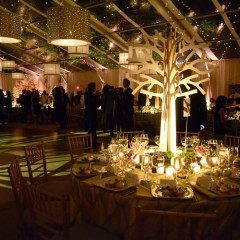 Inside The Central Park Conservancy Fifth Annual Autumn Gala