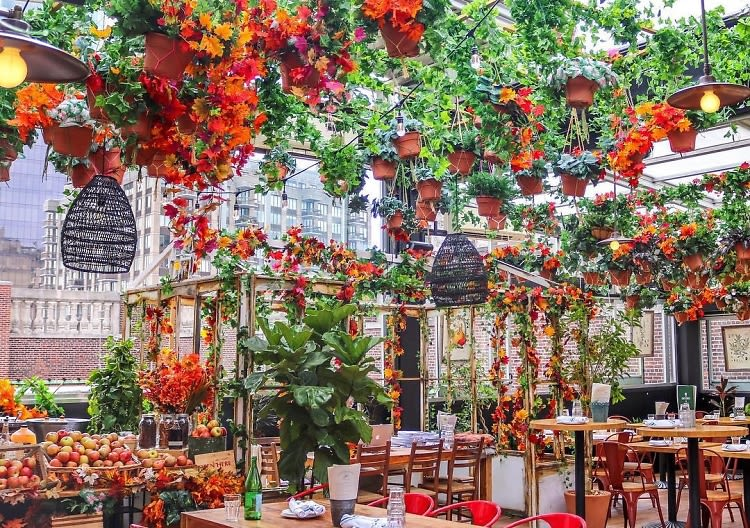 The Most Festive Fall Spots In NYC