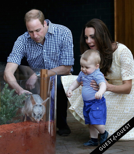 Prince William Kate Middleton Prince George